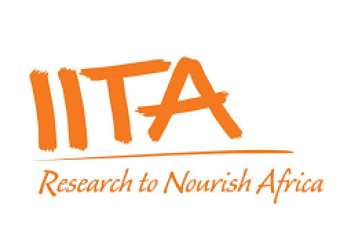 IITA launches Aflasafe